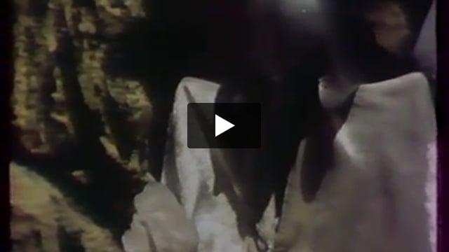 Tristan et Yseult, par la compagnie Daru (France), extrait de Les Giboulées de la marionnette 1979 : 3e festival international des théâtres de marionnettes de Strasbourg.