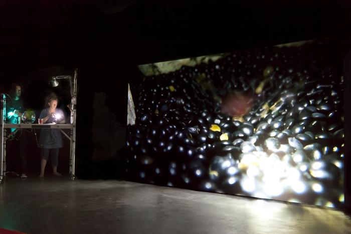 Rêveries d'une fourmi sur le dos d'un éléphant, par la compagnie Omproduck, photo de spectacle.