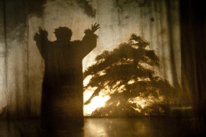 Domovoï, par la compagnie Petite Lumière, photo de spectacle.