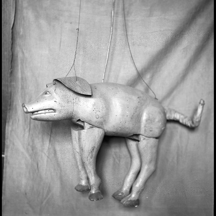 Le cochon de Saint Antoine, marionnette du théâtre Louis de Budt.