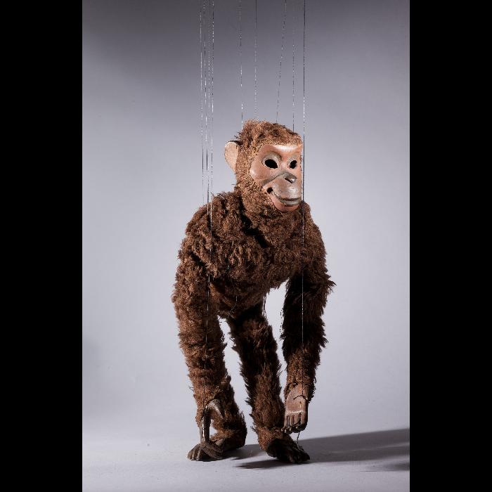 Singe, marionnette pour le numéro <i>Vaudou</i> par les Comédiens de bois de Jacques Chesnais.